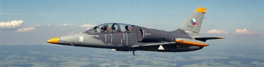 Полет на самолете Л-39